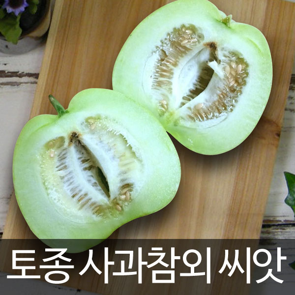 apple melon seed / korean oriental melon seed (10 seeds)