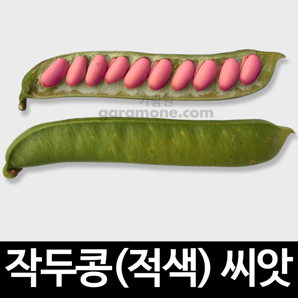 sword bean seed (10 seeds)
