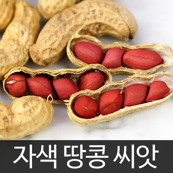 red peanut seed (20g)