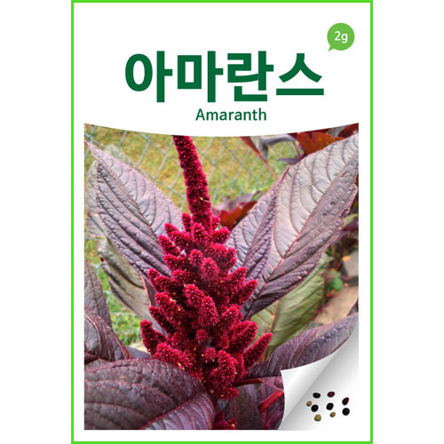 amaranth seed (3000 seeds)