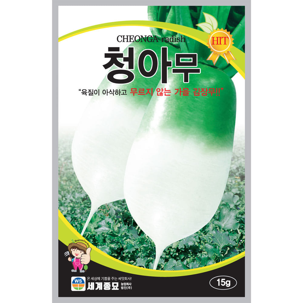 korean radish seeds  ( 15g )